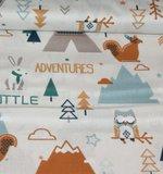 Little Adventures_